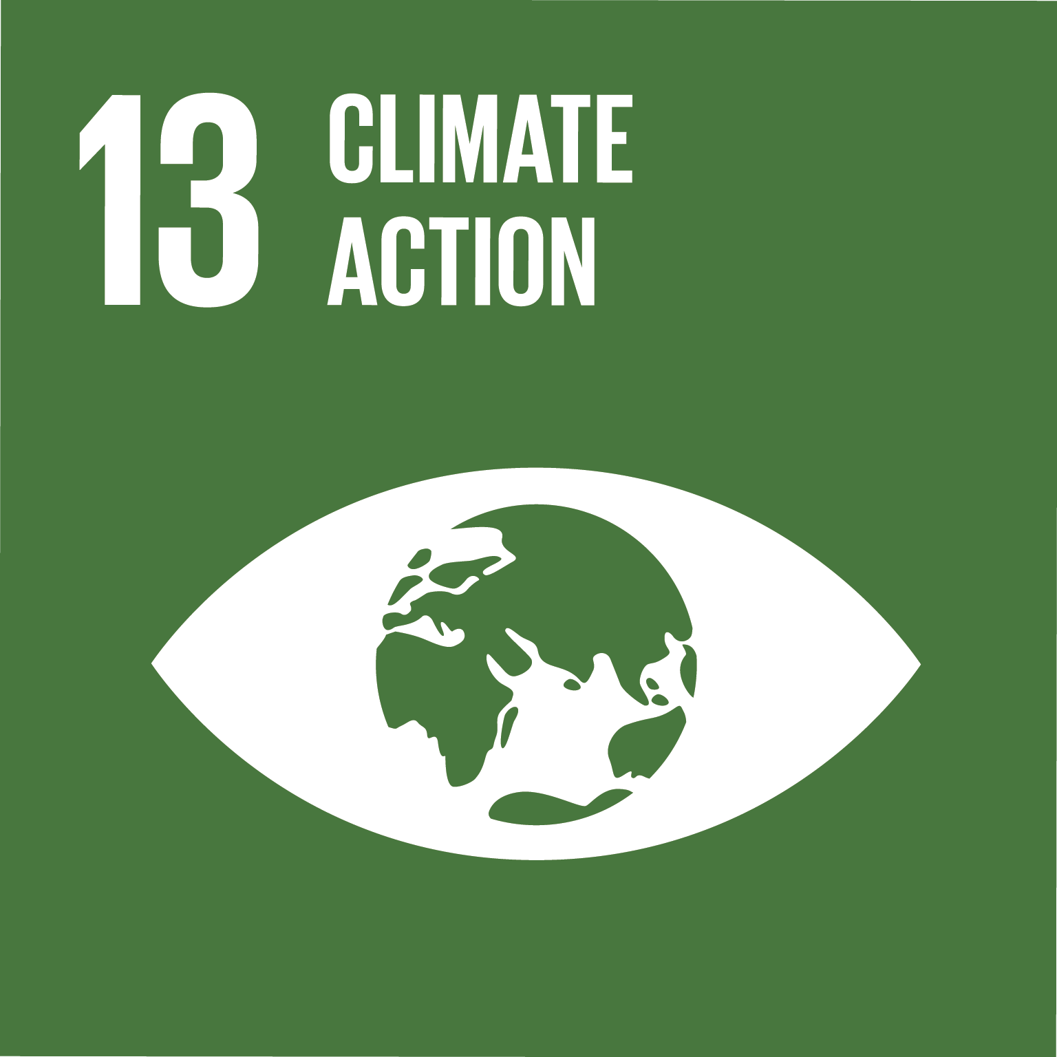 An image of UN Sustainable Development Goal 13